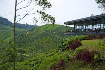 Travel by bus from KL to Cameron Highlands